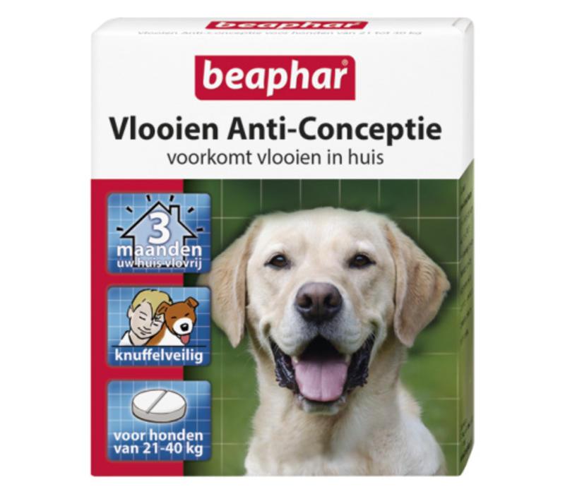 Beaphar   Vlooien anti conceptie hond l   3 stuks   groot   Large