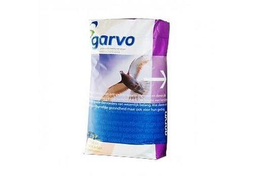 Garvo Garvo Solution 2