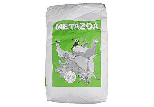 Metazoa Metazoa luzernebrok hp23