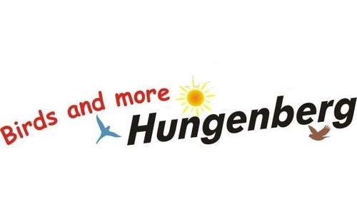 Hungenberg