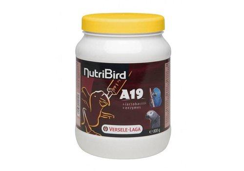 Versele-Laga Versele-Laga Nutribird | Nutribird A19 papegaai |