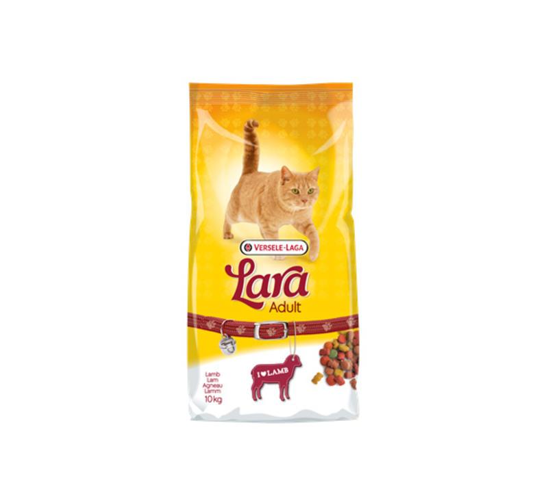 Lara | Adult lamb