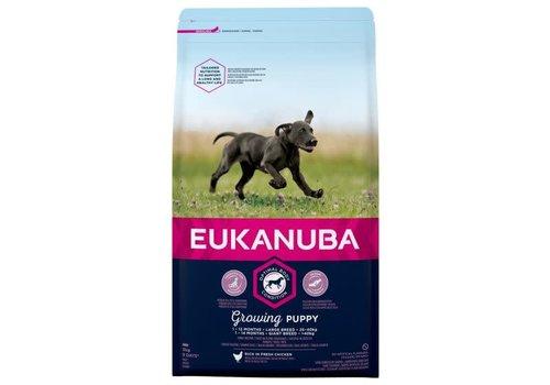 Eukanuba Eukanuba Dog Growing Puppy Large Breed