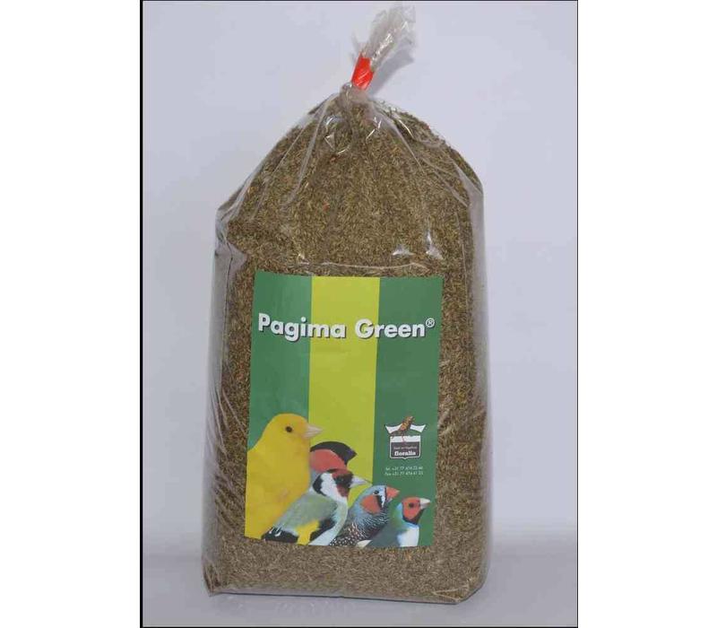 Pagima Green