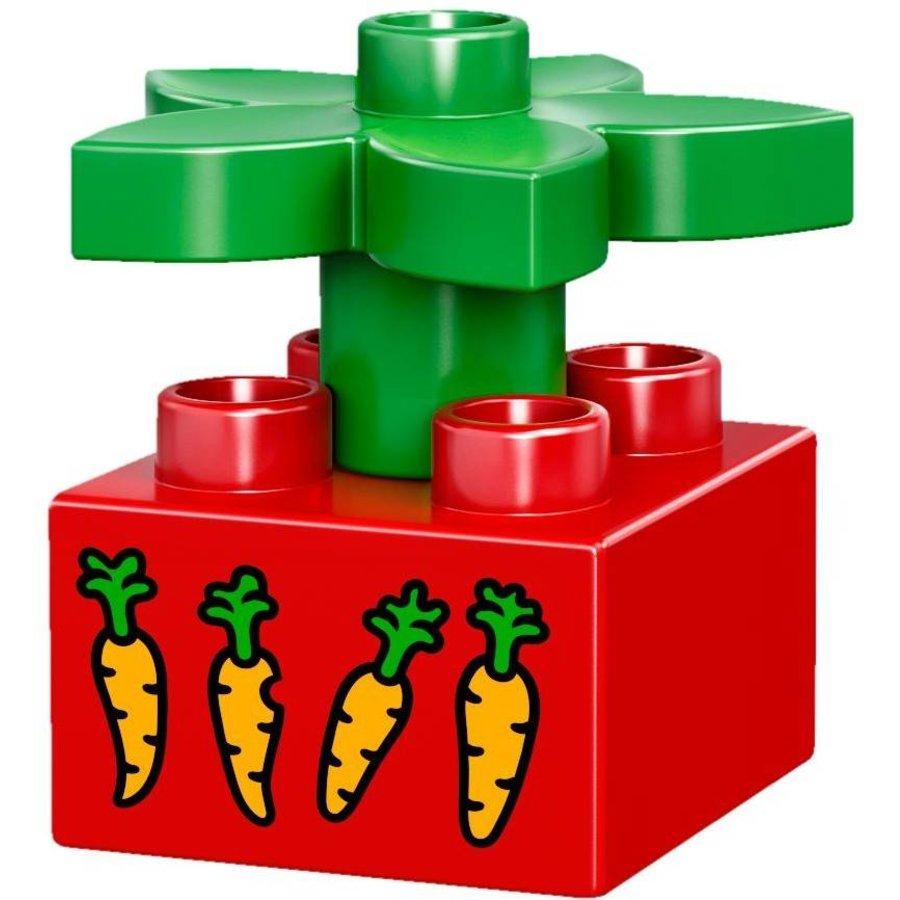 LEGO - Duplo -  Huisdieren - 10838