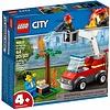 City LEGO - City - Barbecuebrand - 60212