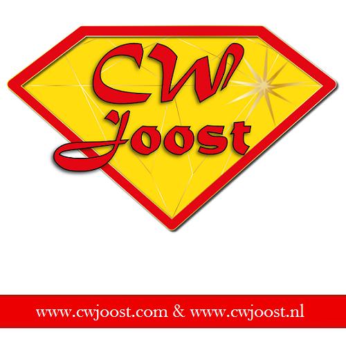 www.cwjoost.com www.cwjoost.nl LEGO Webshop