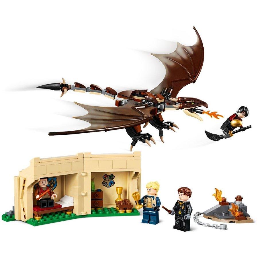 LEGO® Harry Potter Hongaarse Hoornstaart Toverschool Tournooi 75946