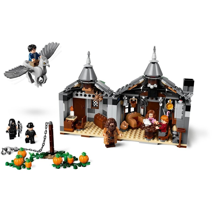 LEGO® Harry Potter Hagrid's Hut: Buckbeak's Rescue 75947