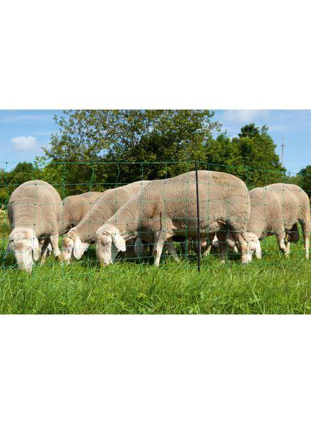 Schafnetz Ovinet grün 90cm oder 108 cm