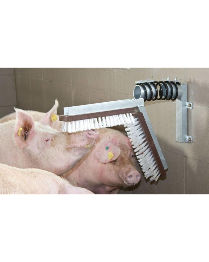 Kratzbürste für Schweine