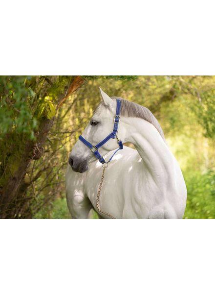 Halfter Mustang, Gr. 1