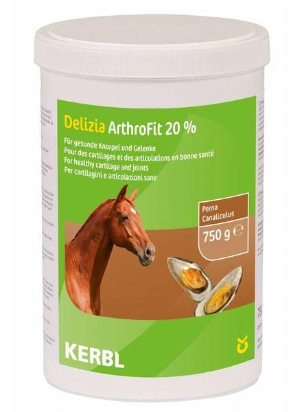 ArthroFit 20% 750g
