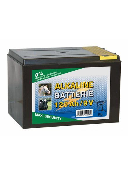 Euroguard ALKALINE Trockenbatterie 9 Volt