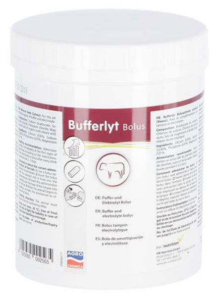 Bufferlyt Bolus 13 g 15 Stk Packung
