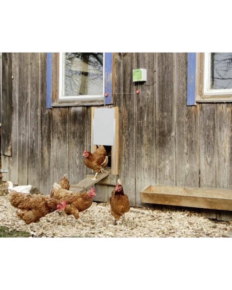 Steuerung für Automatische Hühnertür