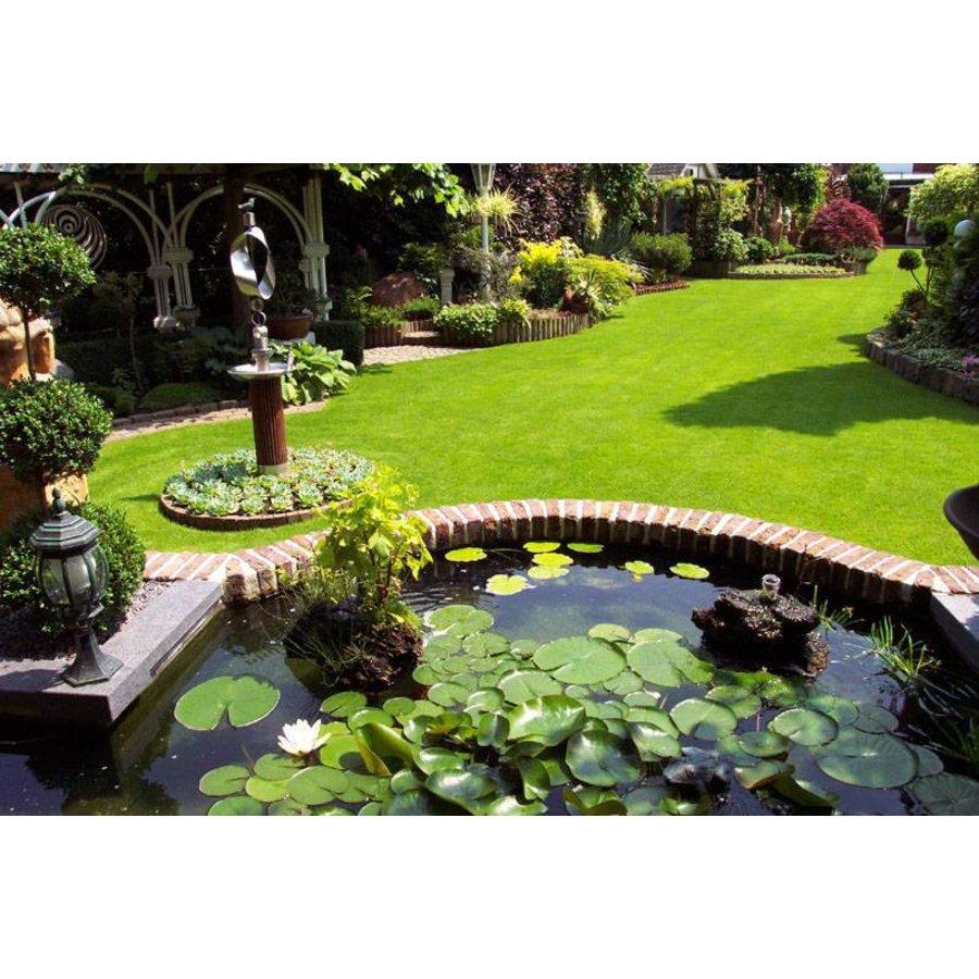 D5 Avenue Einstellbare Gartenspritze