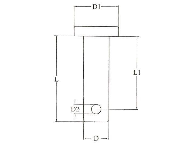 Lankhorst Taselaar Borstbout RVS 7,9 x 38,0 mm