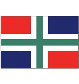 Faber Pro-Motion vlag Groningen 20 x 30cm