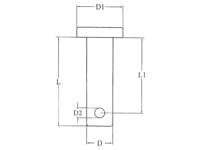 Borstbout RVS 6,0 x 25,0 mm (2x)