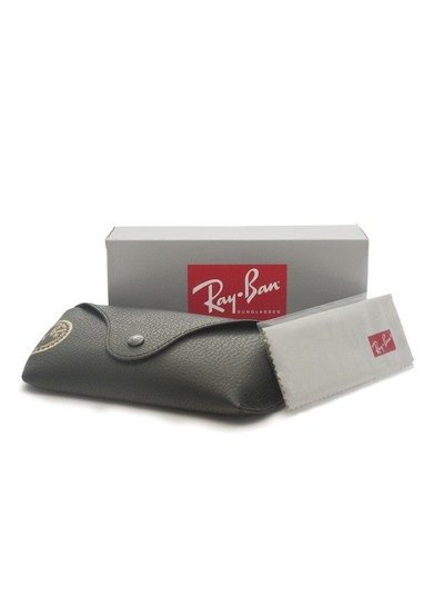 Ray-Ban Liteforce - RB4180 601S9A Gepolariseerd | Ray-Ban Zonnebrillen | Fuva.nl