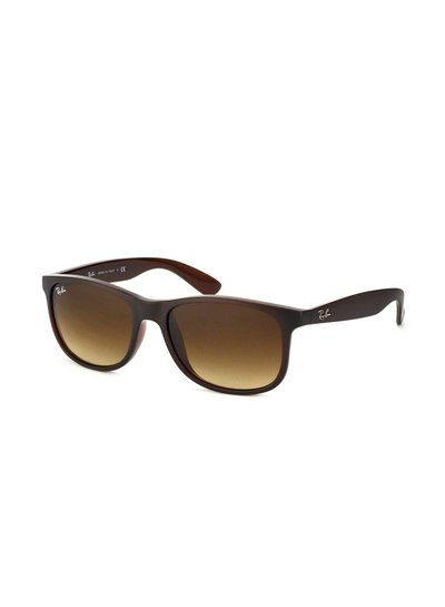Ray-Ban Andy - RB4202 607313   Ray-Ban Zonnebrillen   Fuva.nl