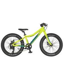 """Scott Roxter 20"""" Junior Bike"""