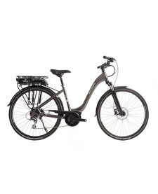 Raleigh Motus Low Step E Bike
