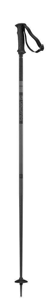 Salomon Salomon ARCTIC Black pole