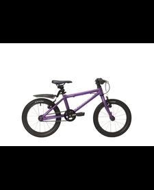 Raleigh Performance Junior Bike