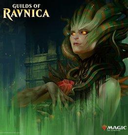 MTG - Ravnica Combo Guilds of Ravnica - 1 Boosterdisplay und 1 Bundle - EN