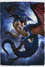 DS - Standard Sleeves Dragon Shield Standard Art Sleeves - Draxis (100 Sleeves)