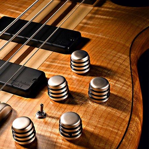 Cort Cort A5 Artisan 5-String Bass Guitar, Active w/Bartolini Pickups, Open Pore Natural