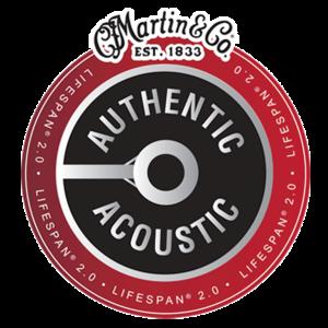 Martin 12-String Authentic Acoustic Lifespan 2.0 String Set, Phosphor Bronze, MA500T Extra Light .010-.047