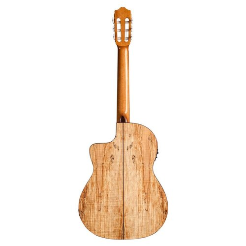 Cordoba Cordoba C5-CET Limited Edition Electro-Classical Guitar, Solid Spruce Top, Spalted Maple Back and Sides