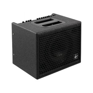 Udo Roesner Da Capo, 75w Acoustic Guitar Amplifier
