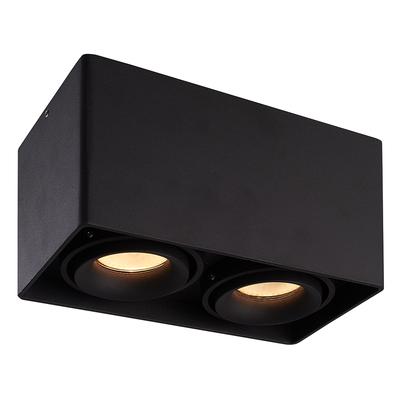 LED Opbouw plafondspot - Rechthoek - Kantelbaar - Dimbaar  - Dubbele lamp - Zwart