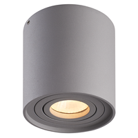 Lightexpert.nl LED Opbouwspot Grijs Kantelbaar Dimbaar Rond IP 20