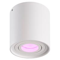 Lightexpert Smart LED Opbouwspot - Rond - Wit - 5W - RGBWW - Kantelbaar - IP20