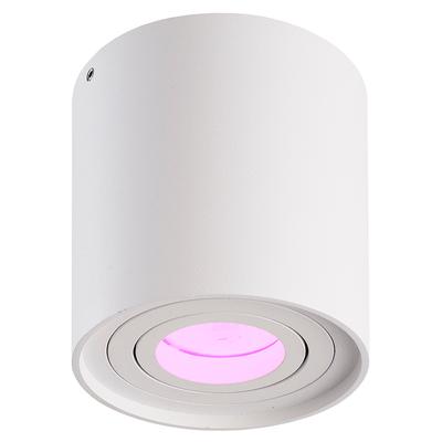 LED Opbouwspot - Smart WiFi - Rond - IP20 - Kantelbaar - Wit - Inclusief GU10 LED spot - 5,5W