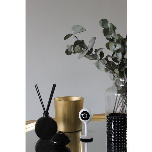 Calex Calex mini Smart Camera