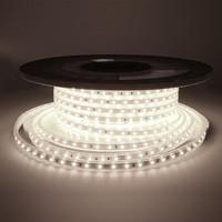 Lightexpert.nl LED Strip 25M - Cool 6000K - Plug & Play - IP65 - Dimbaar