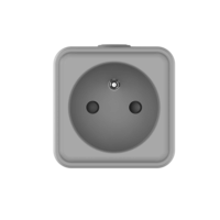 Lednify LEDNIFY WiZ Connected Smart Powerplug BE/FR plus 16A