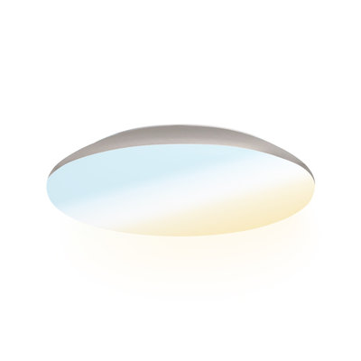 LED Plafondlamp - 1200 Lumen  - IP65 - 12W - Lichtkleur instelbaar - Chroom - Ø25 cm