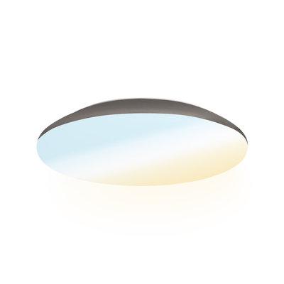 LED Plafondlamp - 1200 Lumen  - IP65 - 12W - Lichtkleur instelbaar - RVS - Ø25 cm