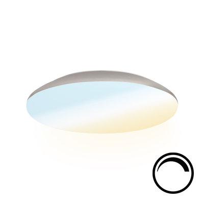 LED Plafondlamp - Dimbaar- 1200 Lumen  - IP65 - 12W - Lichtkleur instelbaar - Chroom - Ø25 cm