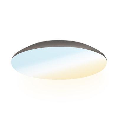 LED Plafondlamp - 1900 Lumen  -  IP65 - 18W - Lichtkleur instelbaar - RVS - Ø30 cm