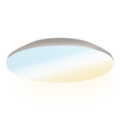 LED Plafondlamp - 2600 Lumen  -  IP65 - 25W - Lichtkleur instelbaar - Chroom