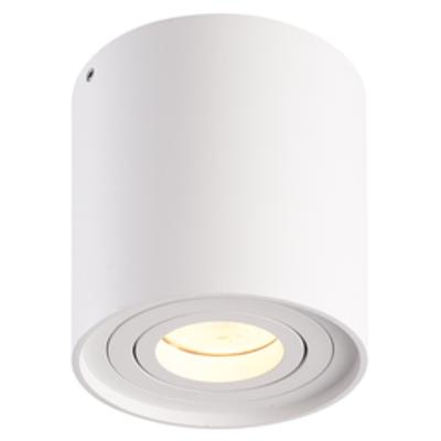 LED Opbouwspot  - Rond - Wit - Kantelbaar - Dimbaar - IP20