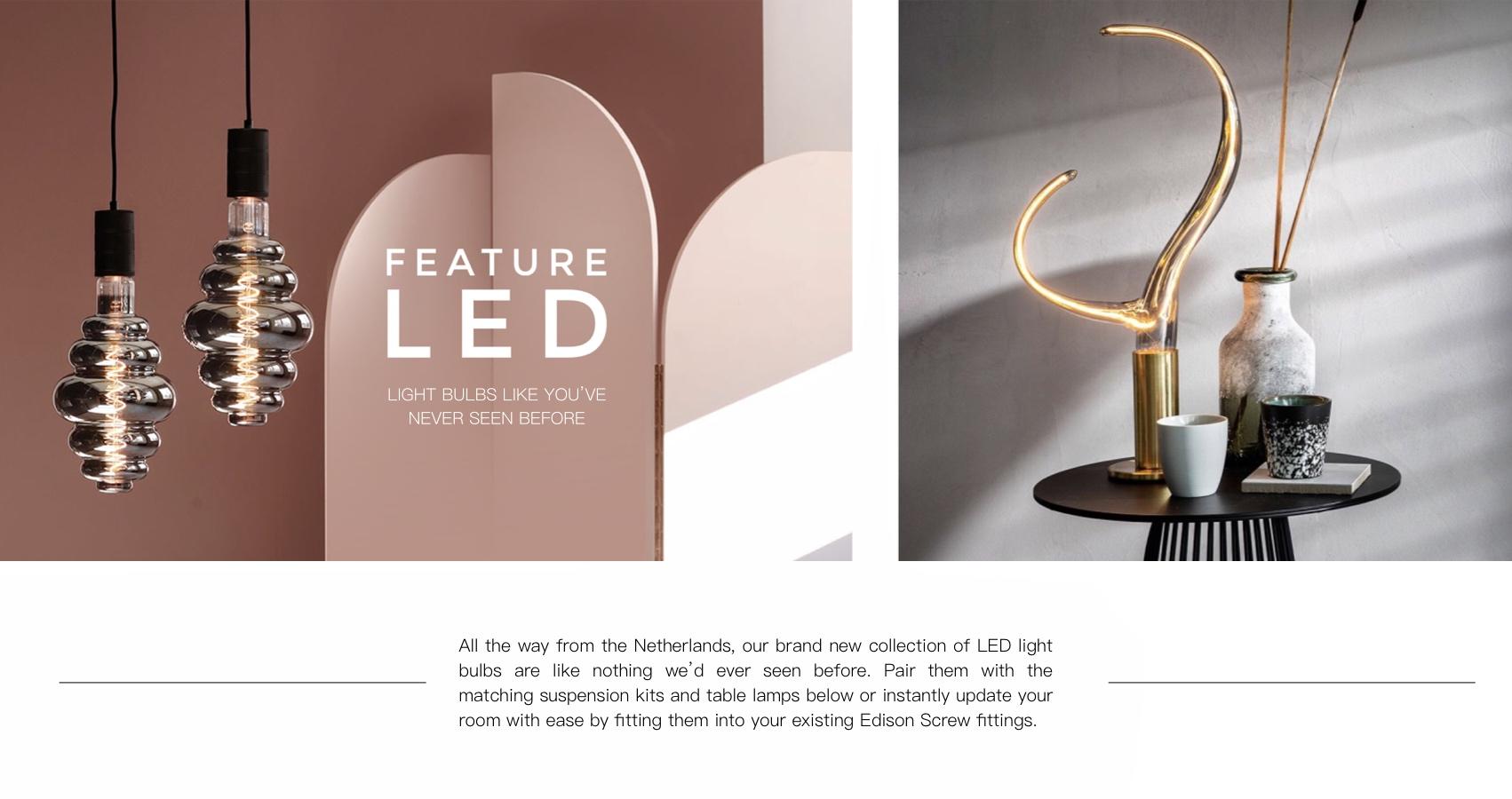Feature LED Light Bulbs